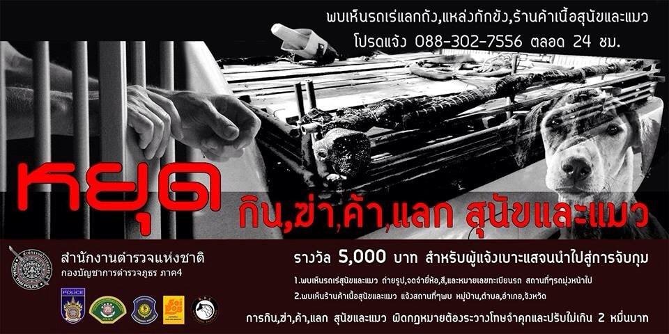 Thailand Run 999 KM in 30 Days